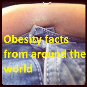 this is a photo of a fat stomach